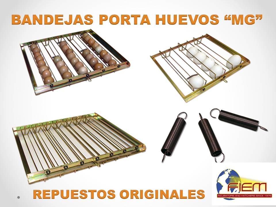 Bandeja incubadoras fiem incuber for Bandejas para huevos